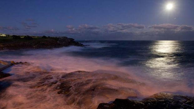 Surface tension ... waves wash onto Clovelly Beach last night under a full moon. Temperatures have been rising in the ...