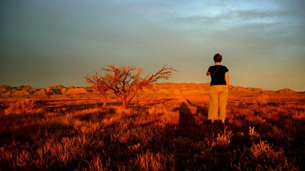 Fertile fields … outback ordeals are a growing literary genre.