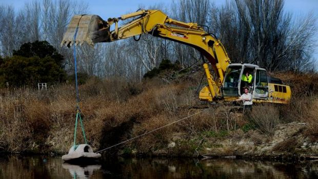TAMS project officer Andrew Hudson installing one of the 50 artificial fish habitats at the Molonglo River that are ...