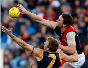 Stretched to the limit: Crow Nathan van Berlo and Bomber Heath Hocking vie for possession.