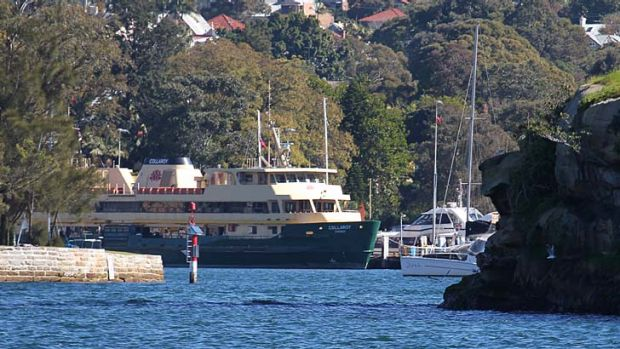 Taken out of service ... the Collaroy after it  apparently hit a humpback whale in Sydney Harbour.