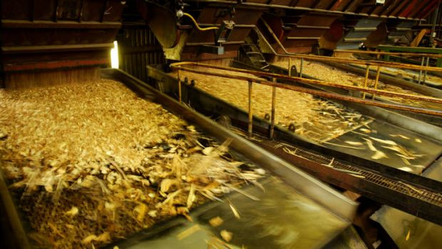 Demand for wood chips has plunged.