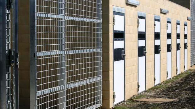 Australian first ... prisoners at the Alexander Maconochie Centre in the ACT will have access to a needle exchange program.