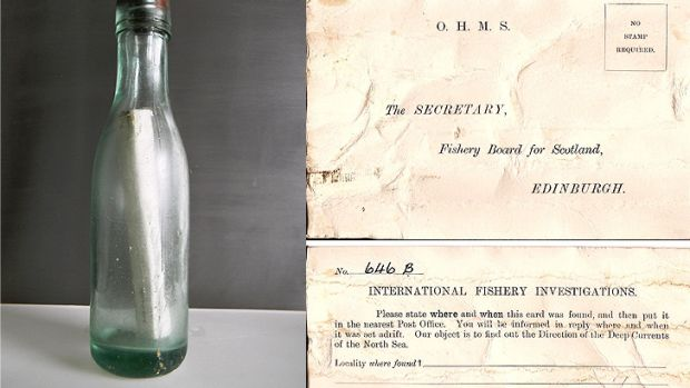 The bottle plucked from the sea, and the message it contained.