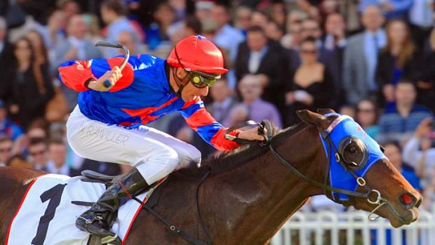 All class: Pierro races clear in the Run To The Rose at Rosehill.