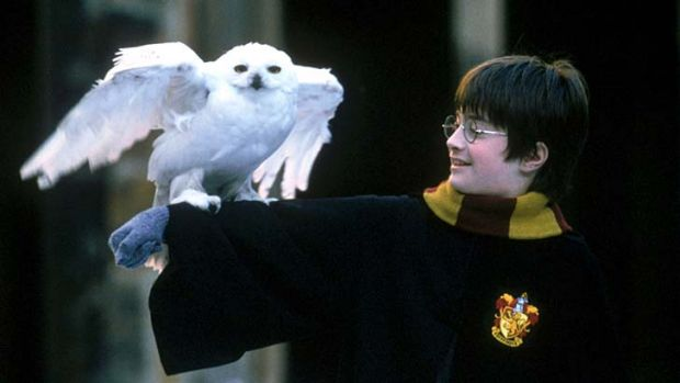 Expelled ... the Harry Potter series has been banned from Medowie Christian School's library.