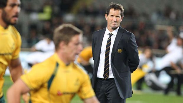 Under pressure ... the respective coaches, Robbie Deans and Heyneke Meyer, enter this encounter with critics banging at ...