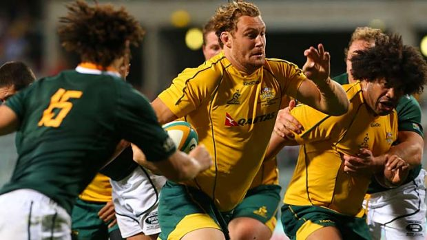 Impact ... Scott Higginbotham cuts through the Springbok defence to score for the Wallabies.