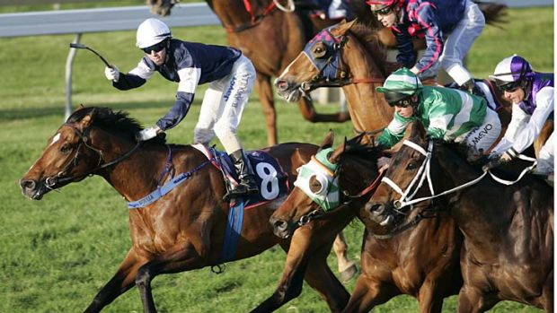 High hopes: Green Moon could miss this year's Caulfield Cup to tackle the Cox Plate.