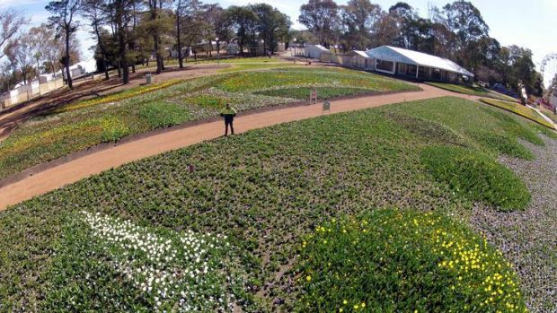 Floriade is set to open on Saturday.
