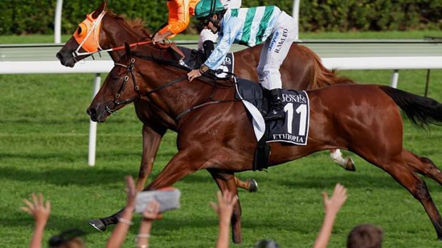 Ethiopia (no 11) ridden by Rhys McLeod, wins the AJC Derby at Royal Randwick on April 14 this year.