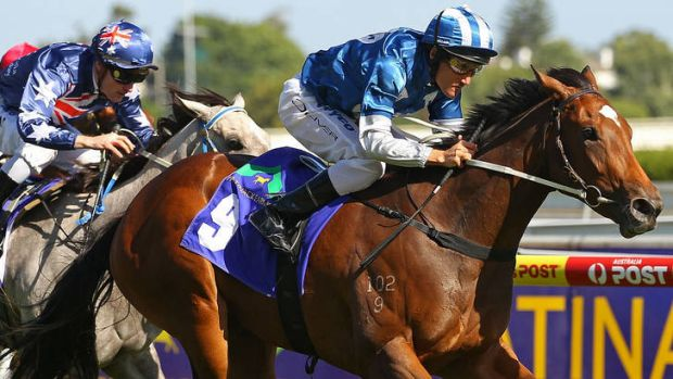 On the rise: Damien Oliver steers Malasun to victory at Caulfield earlier this year.