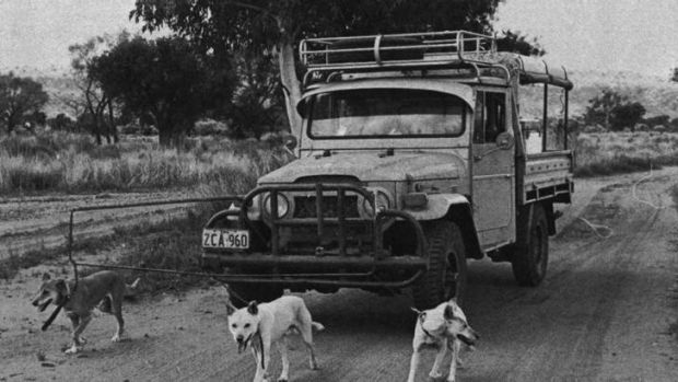 Failed experiment: in the 1970s, when this photo was maybe taken. CSIRO's answer to an efficiency dividend was a dog of ...