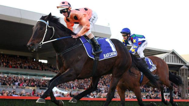 Black Caviar sold Morphettville out this year.