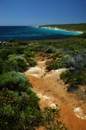 Same, same but different ... bushwalks in the year 2070 will look, sound and even smell different, as landscapes become ...