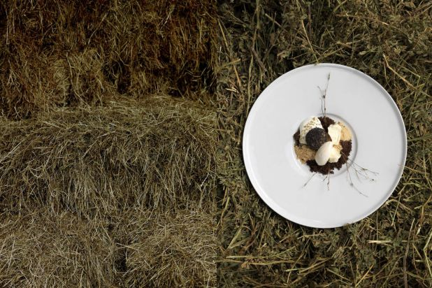 Sweetened grass milk, coffee crumb, peanuts and hops ice cream' by chef James Viles from Biota Dining, Bowral.