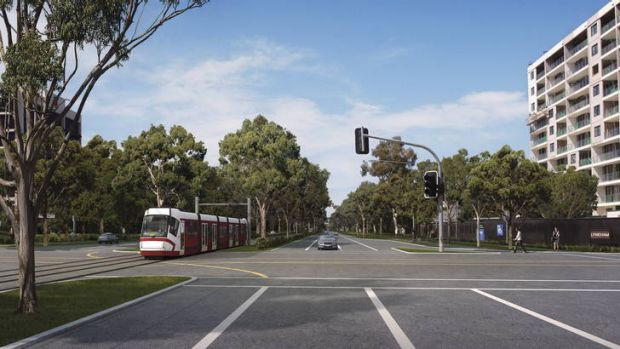 An an artist's impression of the proposed Canberra light rail.