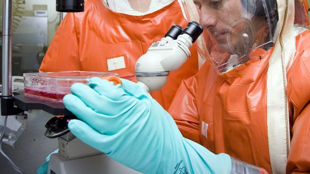 Cancelling a biosecurity lab project in Townsville will trigger several costs.