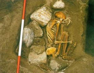 Mystery … a skeleton made up of the bones of several individuals.