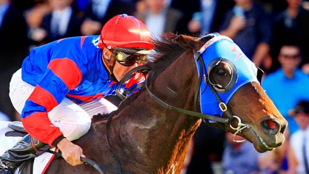 Guineas next: Pierro is hot favourite.