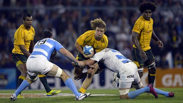 True grit ... Wallabies winger Nick Cummins runs into a tackle from Argentinian flankers Tomas Leonardi and Julio Farias ...