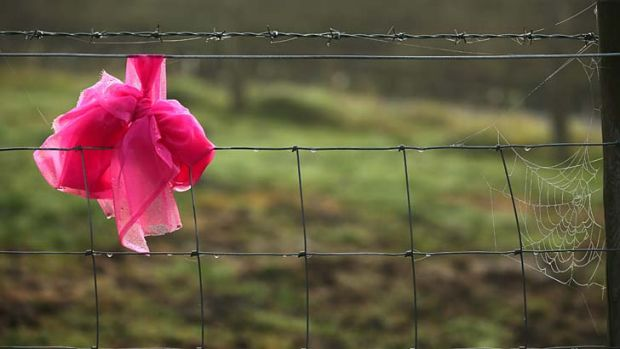 Pink ribbons ... they have been tied to gate posts, trees and railings all over Machynlleth since she went missing.