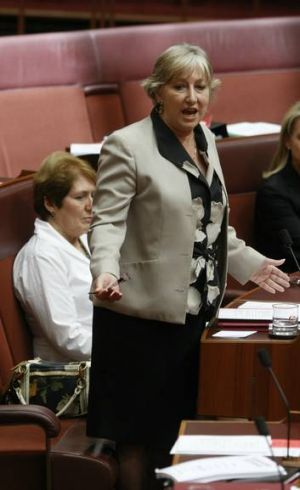 Liberal QLD Senator Sue Boyce. photograph Glen McCurtayne FAIRFAX MEDIA