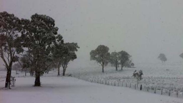 The view from a verandah in Guyra.