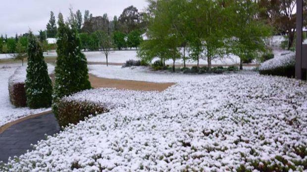 Snow in Glen Innes.