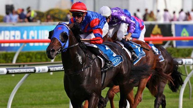 Dominant: Pierro in the Sires' Produce Stakes at Randwick.