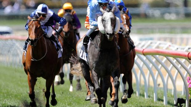 Nicholas Hall riding Instinction to win the BMW Weekend Hussler Stakes.
