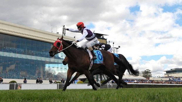 The Caulfield Stakes is won by Glen Boss on Ocean Park.