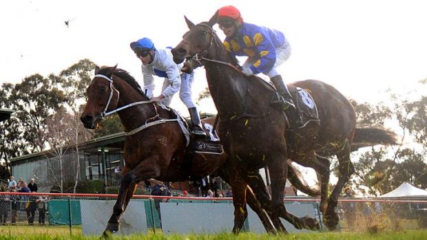 Questions … the Cranbourne performance of Smoking Aces (left) has come under the spotlight.