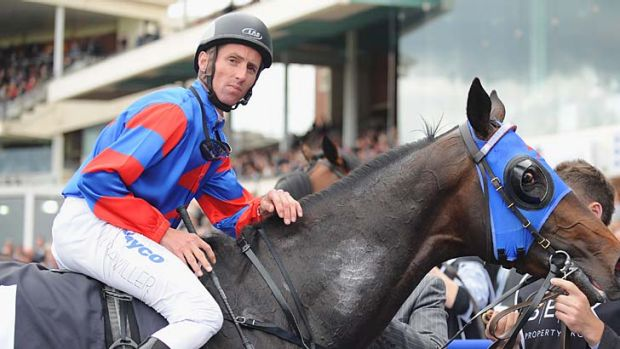 On or off: Nash Rawiller (left) after Pierro's Caulfield Guineas second.
