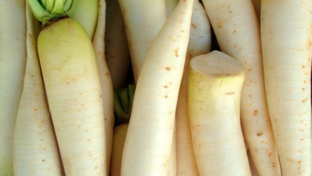 Daikon owes its firmness to its cells being pumped up with water.