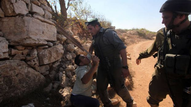 Bitter harvest .... a Palestinian demonstrator argues with Israeli soldiers as he tries to reach grape and olive trees ...