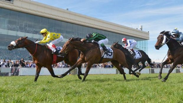Craig Williams guides Dunaden to victory ahead of Alcopop in yesterday's Caulfield Cup.