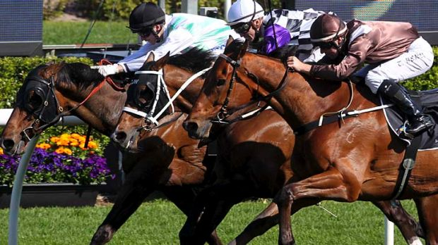 Jockey Sam Clipperton rides Crafty Irna (left) to victory.
