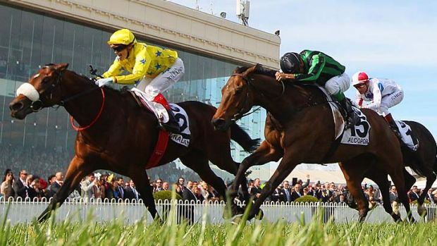 Dunaden ... Macquarie analysts' pick for the 2012 Melbourne Cup.