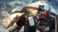 Massive marlin leaves charter crew bruised (Video Thumbnail)