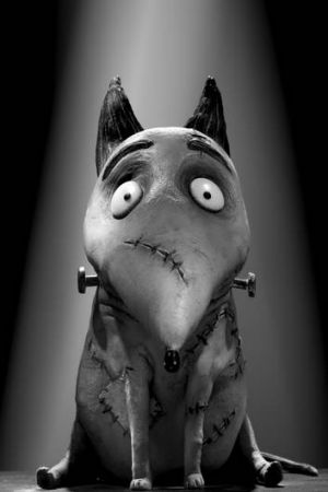 Sparky the dog, from Tim Burton's <i>Frankenweenie</i>.