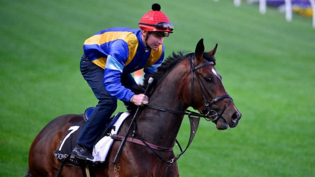 Its A Dundeel with James McDonald aboard.