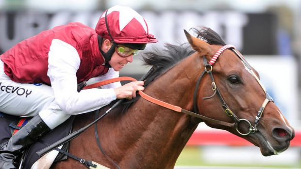 Kerrin McEvoy is hoping to become the eighth jockey to win the Melbourne Cup, Caulfield Cup, Cox Plate and Golden ...