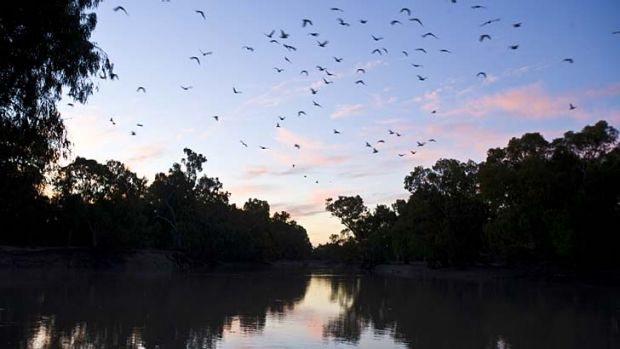 Contentious ... the Murray Darling Basin has caused successive governments problems.