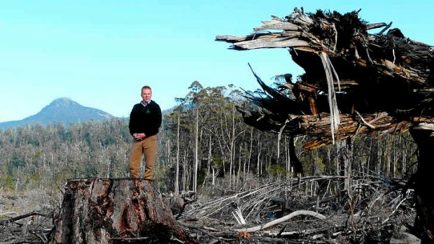 The Wilderness Society's Vica Bayley in the Esperance Valley, southern Tasmania. The state's forestry peace talks ...