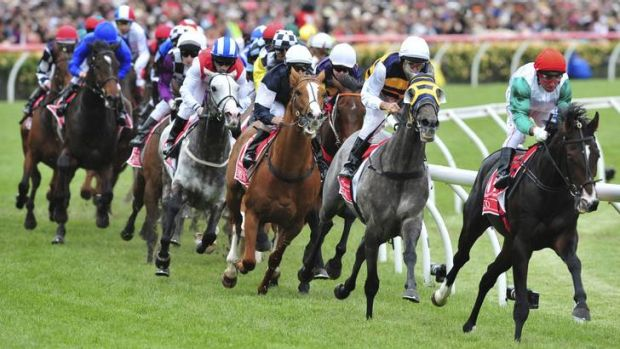 The 2011 Melbourne cup field at the first turn at Flemington.