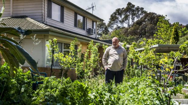 Paul Crawford of Mawson is nearly self sufficient in terms of the food he grows and energy he saves at his suburban home.