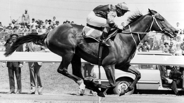 Peter Cook on Just A Dash leads the way to win the 1981 Melbourne Cup.