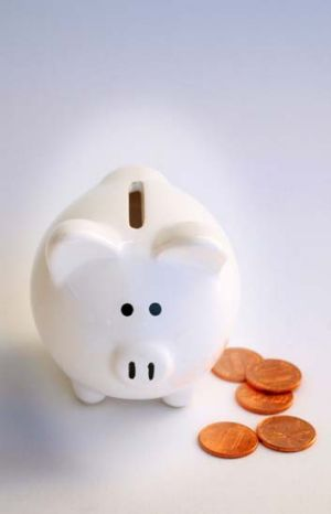 These are simple tips for counting pennies and learning how to budget.