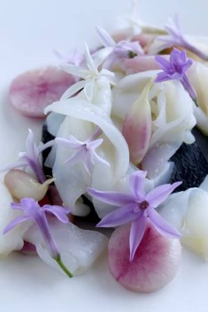 Delicate ... Berridale Farm baby radishes feature on the Quay menu.